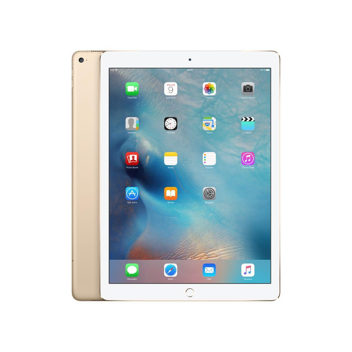 Apple ipad pro 12.9 cellular 256go gold (photo)