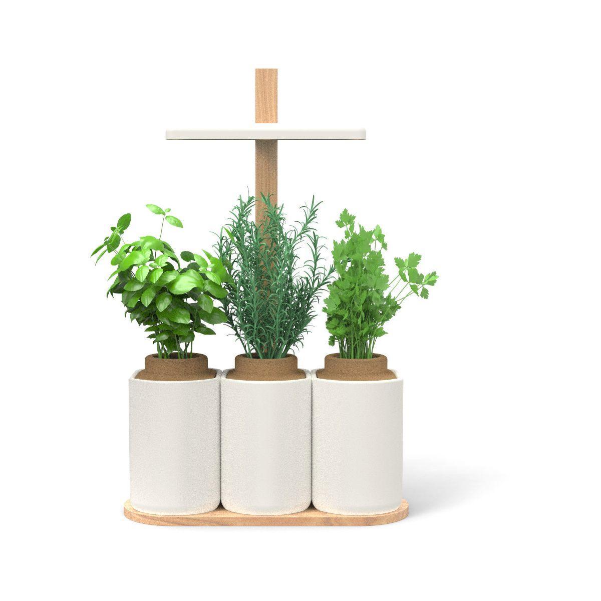 Jardin d'int�rieur pret a pousser smart lilo - livraison offerte : code liv (photo)