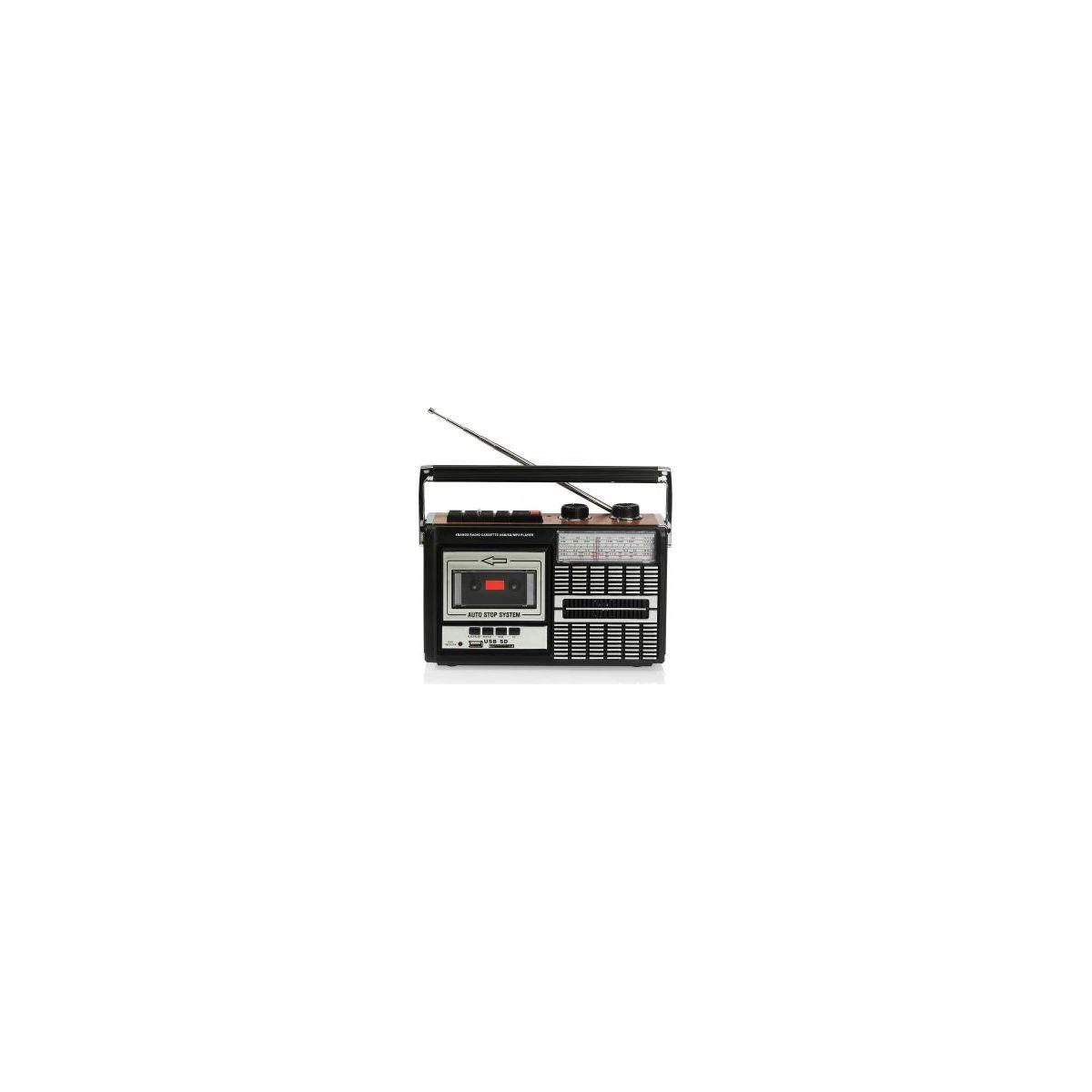 Radio analogique ricatech pr85 recorder 80's (photo)