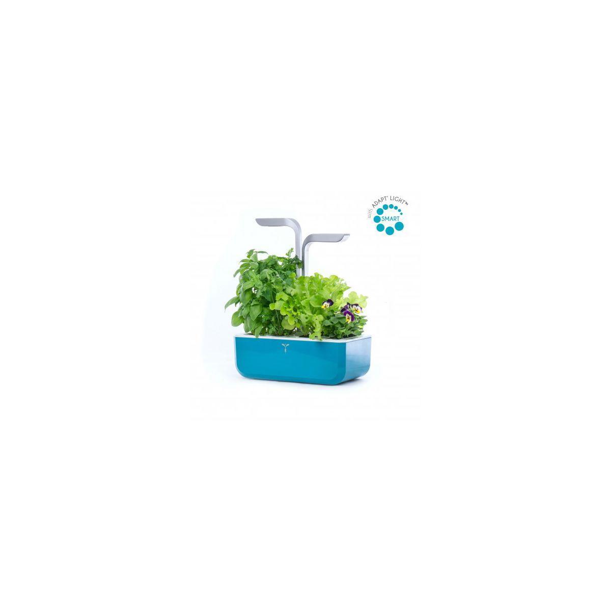 Jardin d'int�rieur veritable smart teal blue - 15% de remise imm�diate avec le code : deal15 (photo)