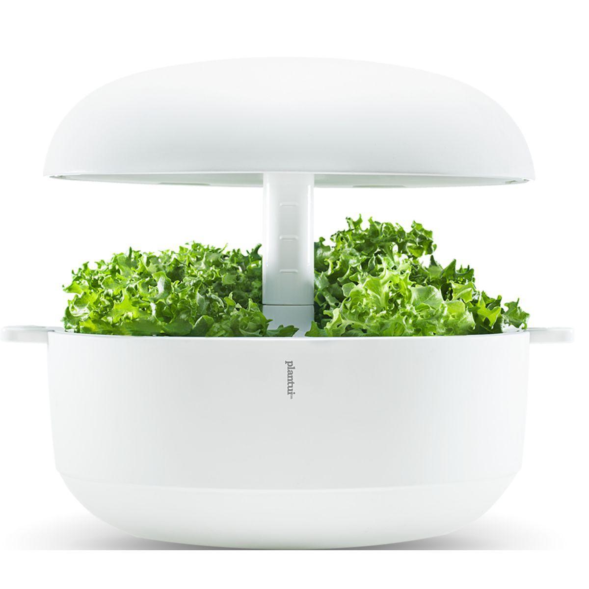 Jardin d'int�rieur plantui 6 smart garden blanc - 15% de remise imm�diate avec le code : priv15 (photo)