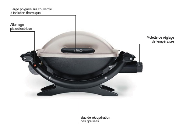 Barbecue gaz weber q 1000 titanium barbecue gaz for Barbecue weber gaz q120